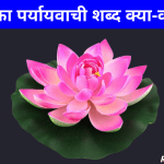 कमल का पर्यायवाची शब्द | Kamal Ka Paryayvachi Shabd