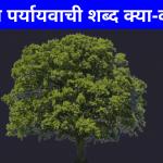 पेड़ का पर्यायवाची शब्द | Ped Ka Paryayvachi Shabd