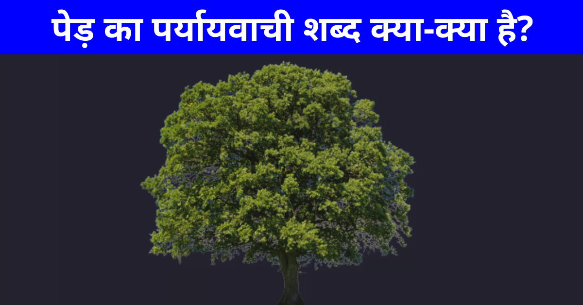 पेड़ का पर्यायवाची शब्द   Ped Ka Paryayvachi Shabd